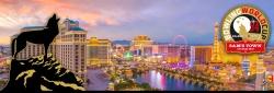 Qubica AMF World Cup Las Vegas - dal 04 novembre al 11 novembre 2018